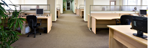 Carpet Cleaning Carpet Cleaner Steam Carpet Cleaning