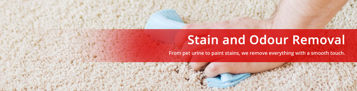 Stain And Odour Removal Services Melbourne